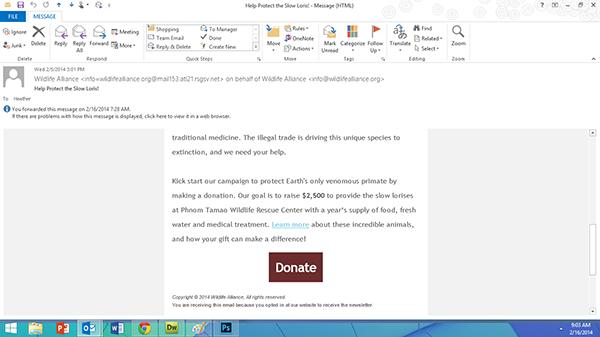 wildlife alliance e-newsletter 2